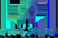 Onyxes Technologies